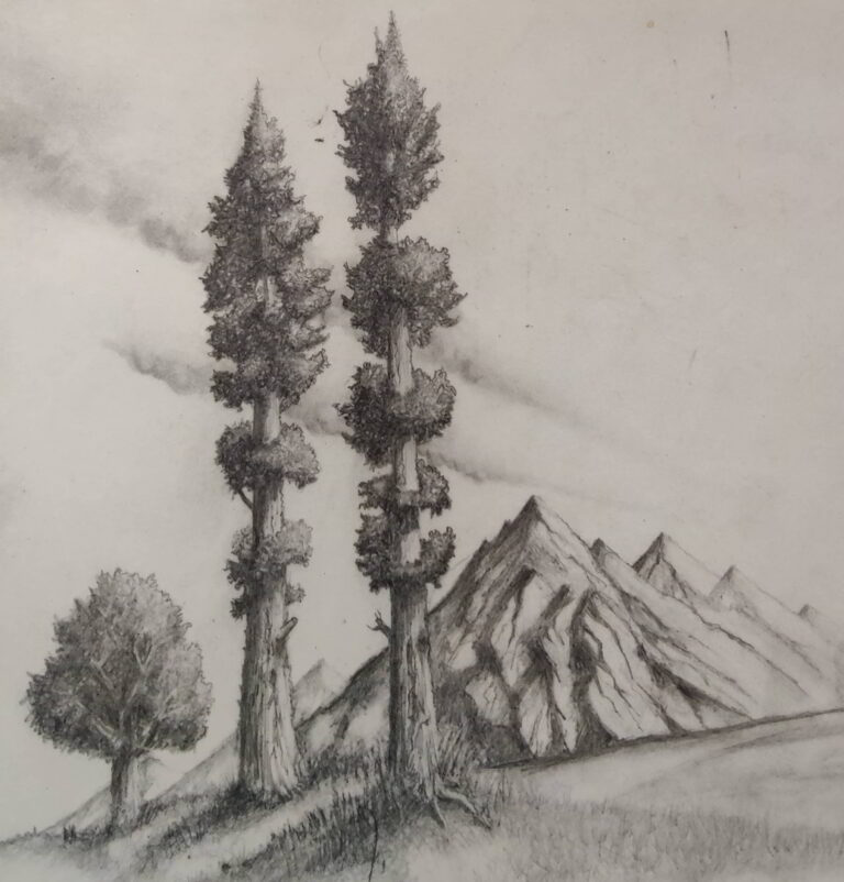 Shanky Studio Surinder Shanker Anand Graphite pencil drawing trees and hills from memory without using reference picture